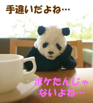 panda_01[1]