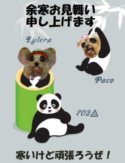 5959527-panda[1]のコピーのコピー2