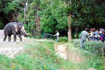 zoo-ibento02.jpg