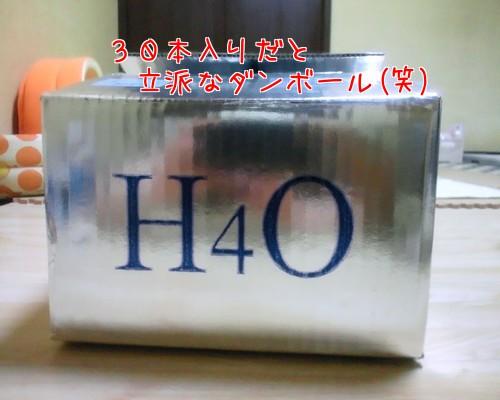 H4O 30本入り