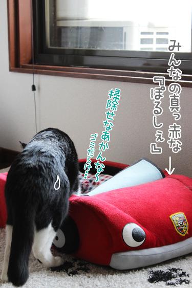 25_0409_2.jpg