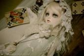 blog3246.jpg
