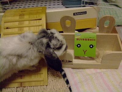 牧草BOX