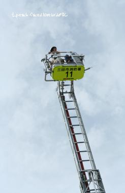 消防フェア3