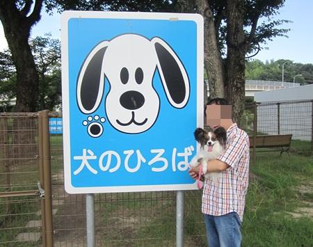 20120728hirokawa.jpg