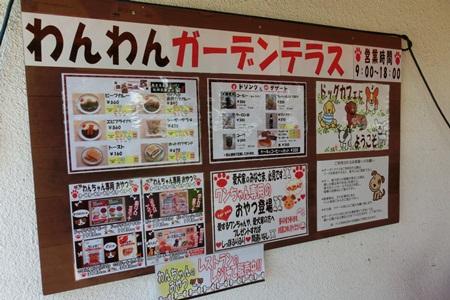 20120731hirokawa.jpg