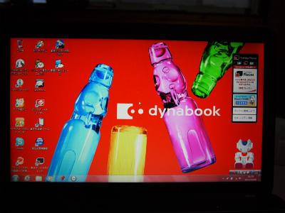 PC080806.jpg