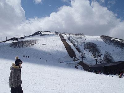 forblogpic_20120505161538.jpg