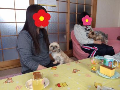 こむぎトライアル0211