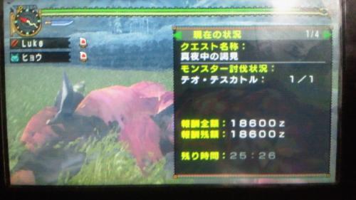 NEC_0233.jpg