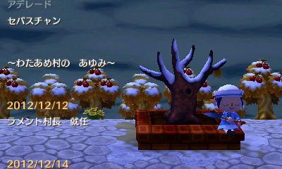 あゆみが見れる木