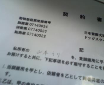 P2012_0925_095405.jpg