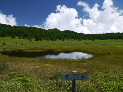湯の丸高原 池の平湿原 鏡池