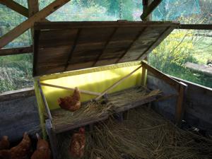 8鶏小屋屋根が上がる