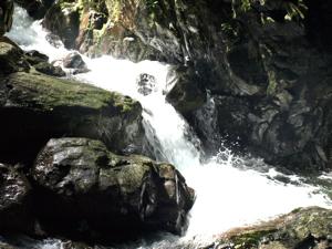2滝行三回目20120821