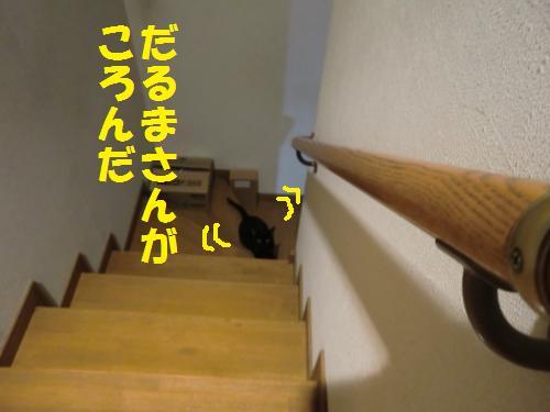 20130114_1.jpg