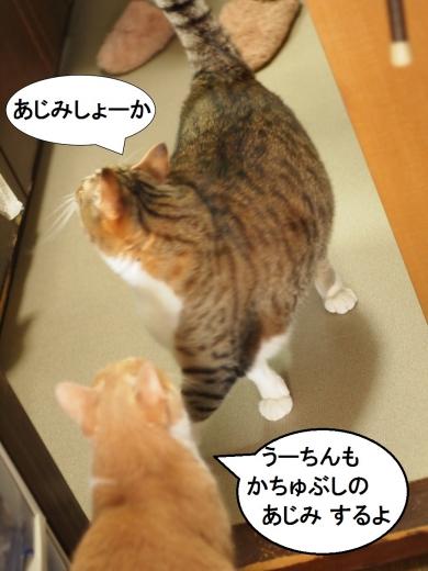 ささっちゃん部長&雲丹専務