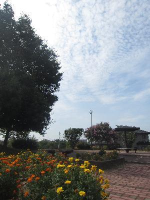 IMG_5584 ⑩ 空はもう秋