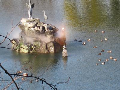 IMG_0219 ⑩ 幸の池の朝