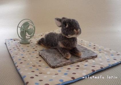 羊毛作品1