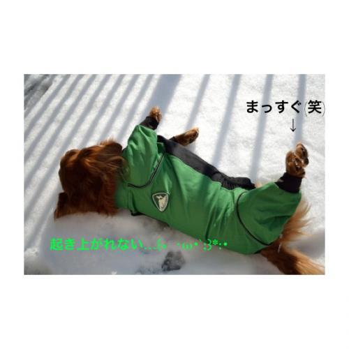 雪遊びアトム