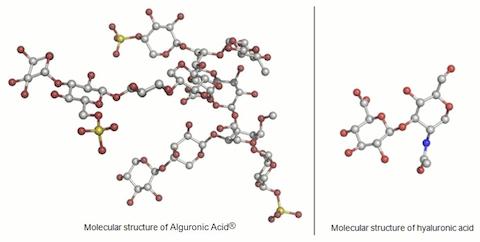 alguronic_acid_molecule.jpg