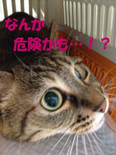20121016_8.jpg