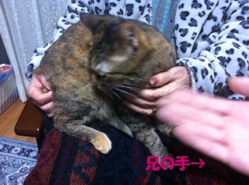 20121024_5.jpg