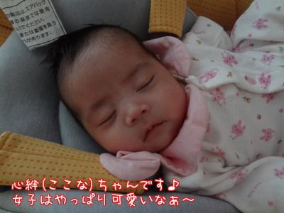 pZqH6H8M5yBNY_N.jpg