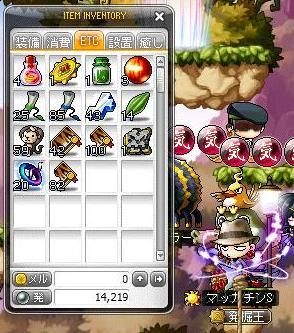 Maple10454a.jpg
