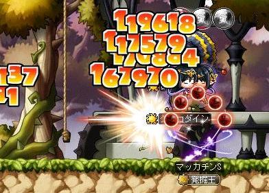 Maple10498a.jpg