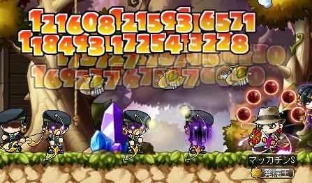 Maple10513a.jpg
