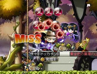 Maple10514a.jpg