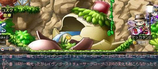 Maple10527a.jpg