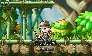 Maple11052a.jpg