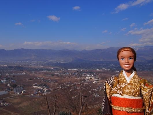 takeda-20140101-10s.jpg