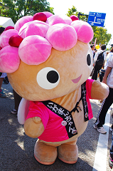2012,90084埼玉羽生市