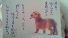 healing beauty salon treatments ☆Lialani☆-201010161229000.jpg