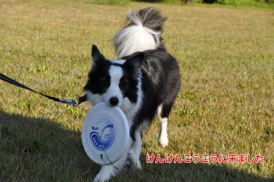 20141122_ken10.jpg