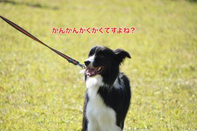 20141122_ken11.jpg