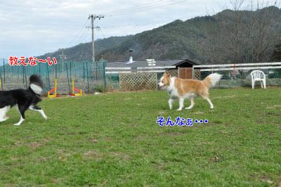 20141124wan_m02.jpg