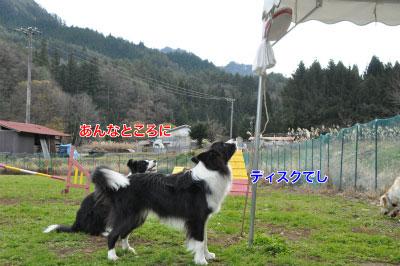 20141124wan_r01.jpg