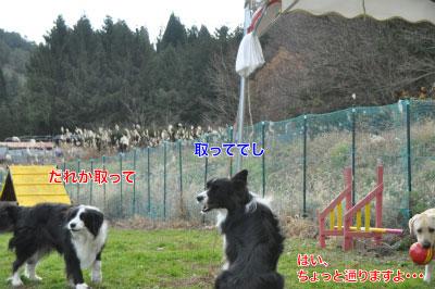 20141124wan_r02.jpg