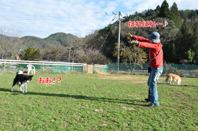 20141124wan_r05.jpg