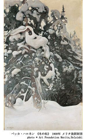 冬の松-1