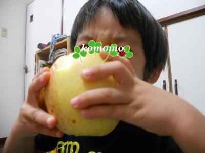DSCN8690_convert_20120930104750.jpg