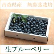 img_product_14775060784fff7cf34f3ab.jpg