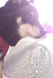 130101_asahi.jpg