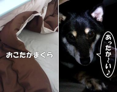 130118_kotatsu.jpg