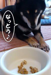 130301_nattou.jpg